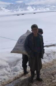 Afghan6